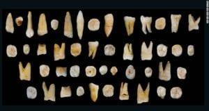 中国 考古新发现 人类牙齿