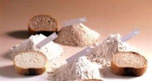 法国 餐点 面包 面粉