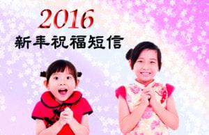 2016新年祝福短信