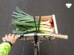 巴黎 单车 菜篮