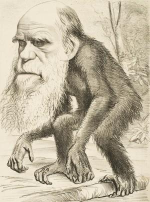 达尔文的进化论至今仍是一个假说。(图片来源﹕维基)
