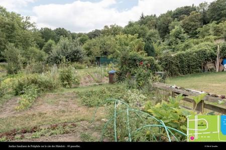 菜园也是扮演绿化的角色。(Ville de Versailles)
