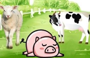 一只猪、一只绵羊和一头乳牛,被关在同一个畜栏里(圖片:歐洲希望之聲合成)