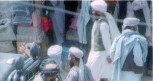 塔利班游击队(维基百科)
