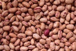 豆类(pixabay)