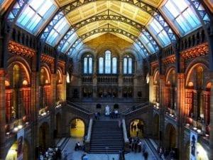 伦敦自然历史博物馆內廳(圖片:piaxbay)