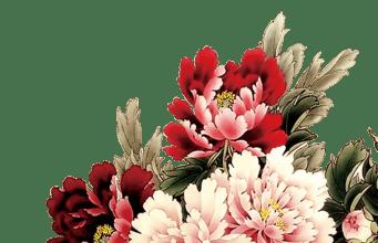 国色天香:牡丹花(授权图片)