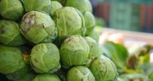 一位远方的农村亲戚向我传授经验:买菜一定要挑选那种不水灵的、有虫子或虫子咬过的蔬菜(图片来源:pixaby)