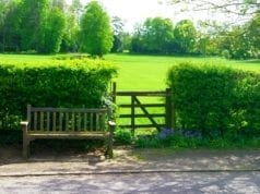 美丽的乡村环境(图片来源:CCO可再利用图片)