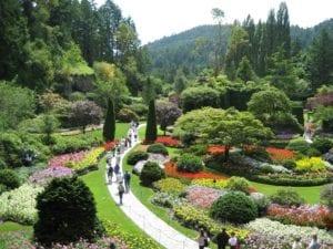 布查特花园 (图片:pixabey)