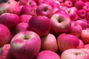 日本秋田红富士苹果