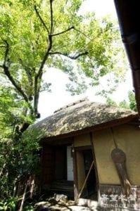 從野宮神社往山的方面走,路上很多樸拙的屋社(图片:欧洲希望之声)