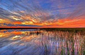 """荷兰索恩为何被称为""""贫民的白宫""""?邻城为何一夜之间神秘消失成为大片沼泽?(图片来源:pixabay)"""