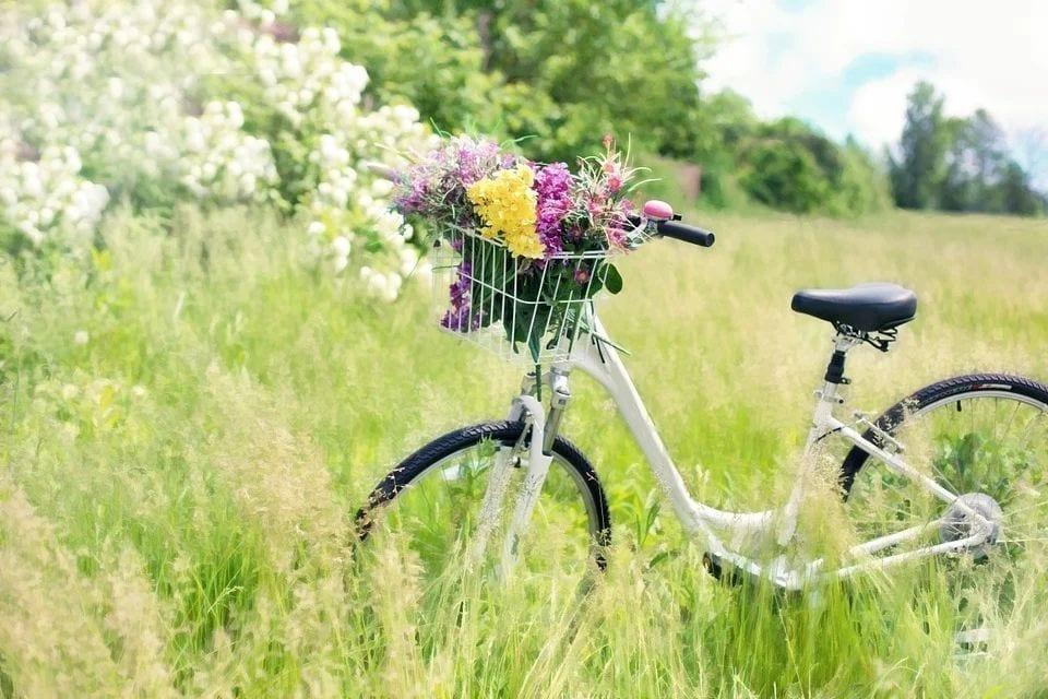 2021年欧洲自行车供应严重不足。(图片来源:pixabay)