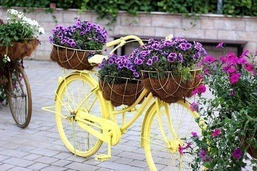 在比利时、挪威、瑞典和瑞士,自行车的使用率也很高。(图片来源:pixabay)