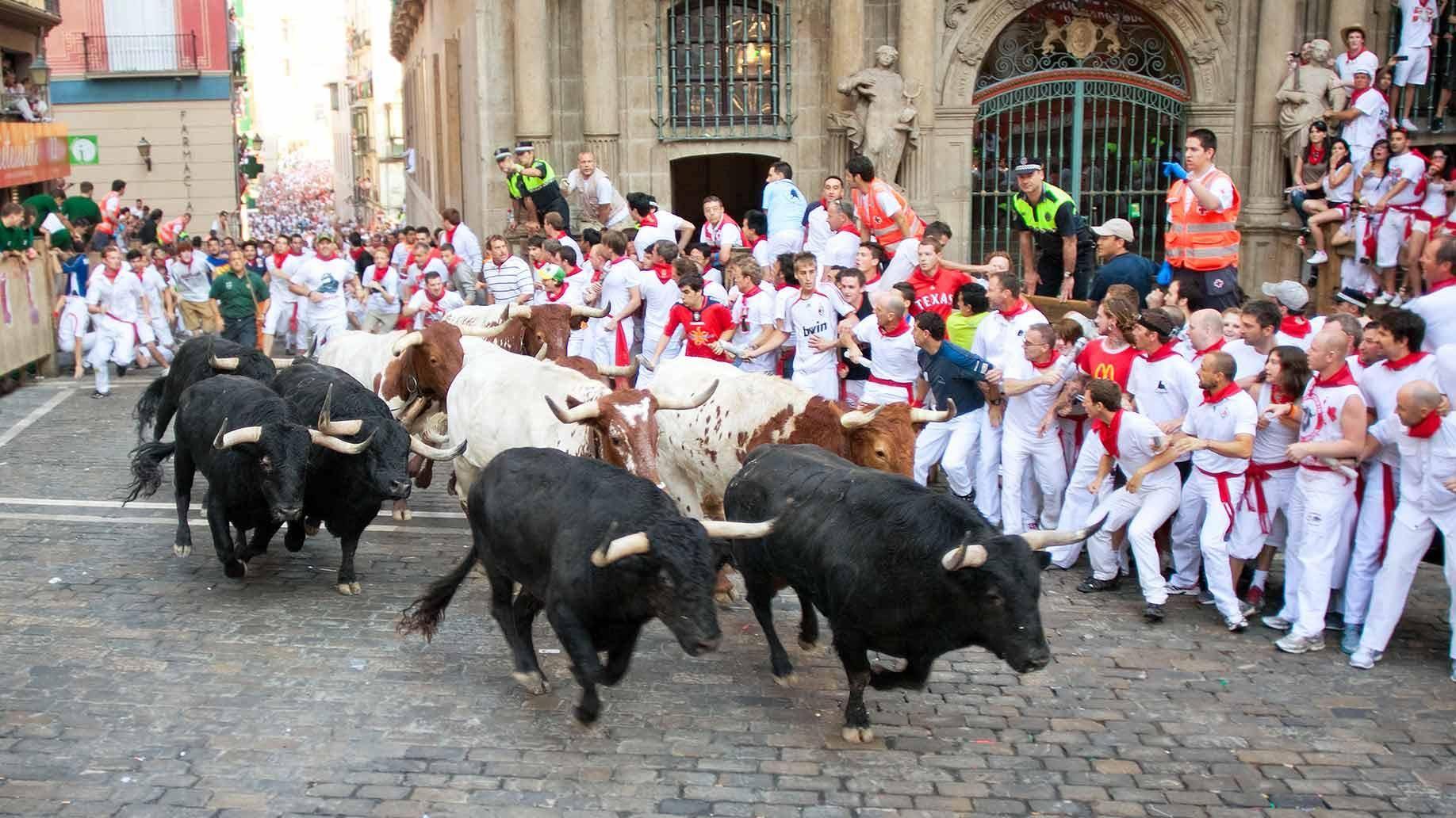 西班牙 传统节日 奔牛节