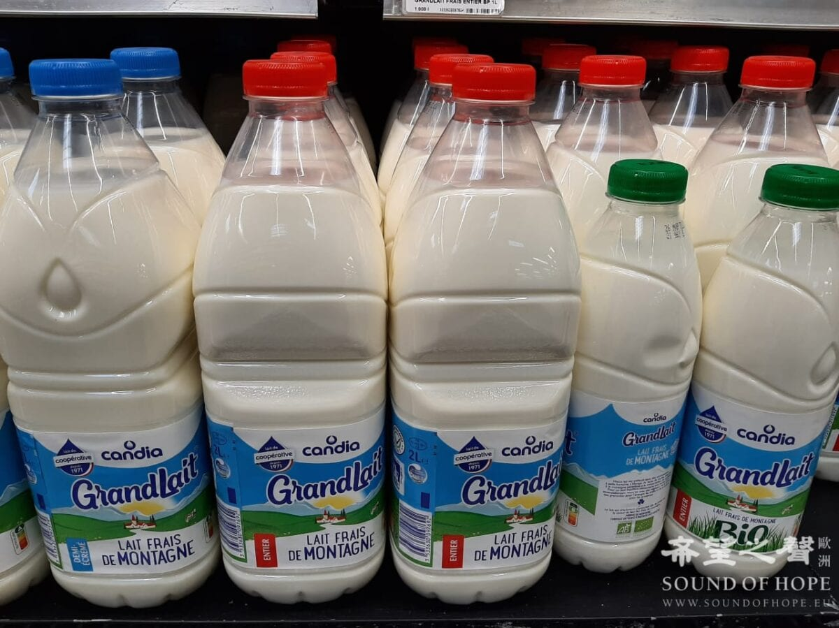 法国 乳制品 分类