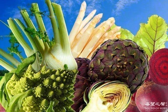 欧洲 蔬菜 种类