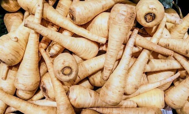 欧洲 蔬菜 品种
